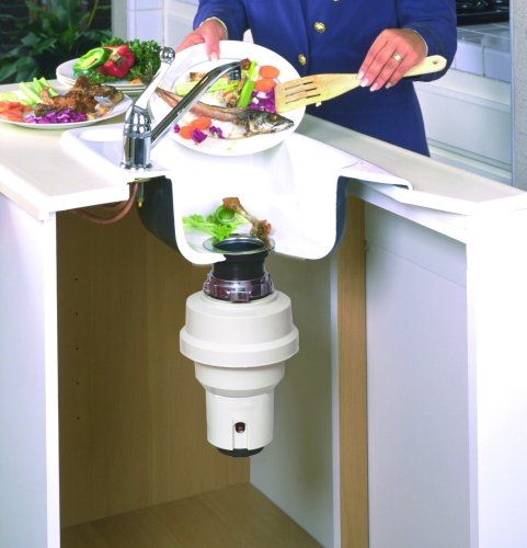 how to clean food waste disposer